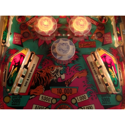 Gottlieb Jungle Queen Pinball Machine - 1977 Four Player Game in Excellent Condition